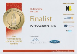 Certificate Pet Care